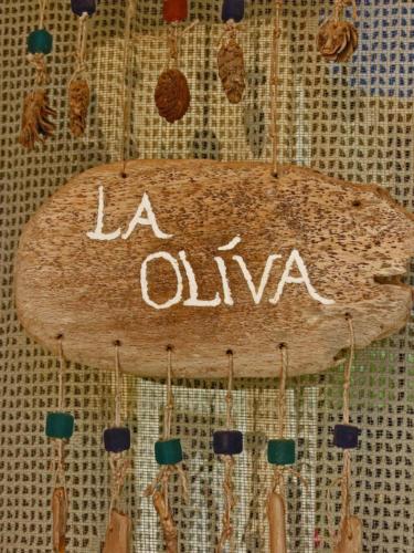 olivia-schild