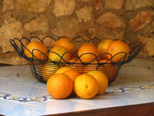 orangenkorb